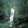 WaterfallInTasmania_ab